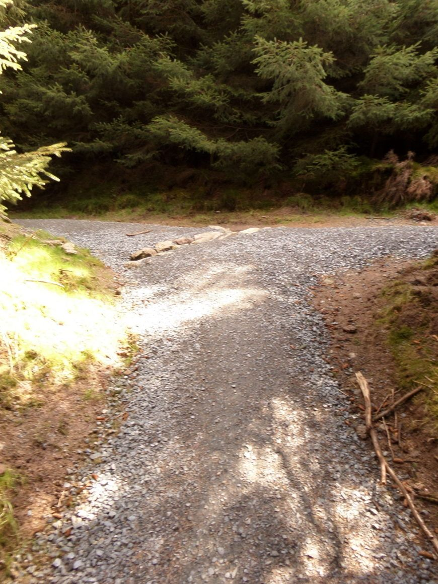 Pic-9-Two-roads-diverged
