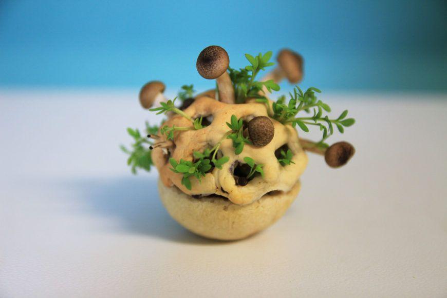 Edible-Growth Chloe-Rutzerveld