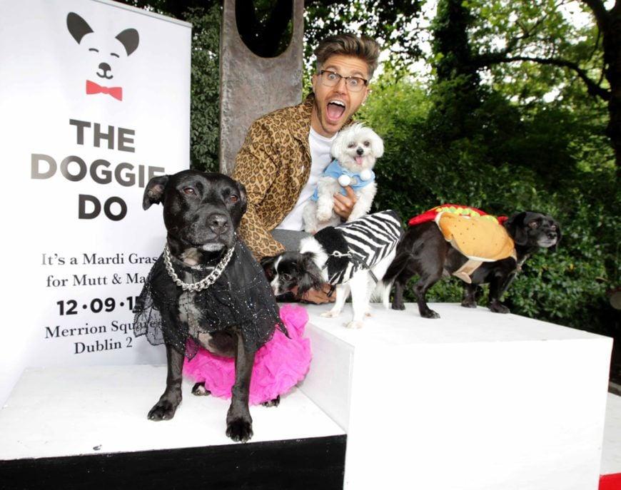 The-Doggie-Do-fest-3