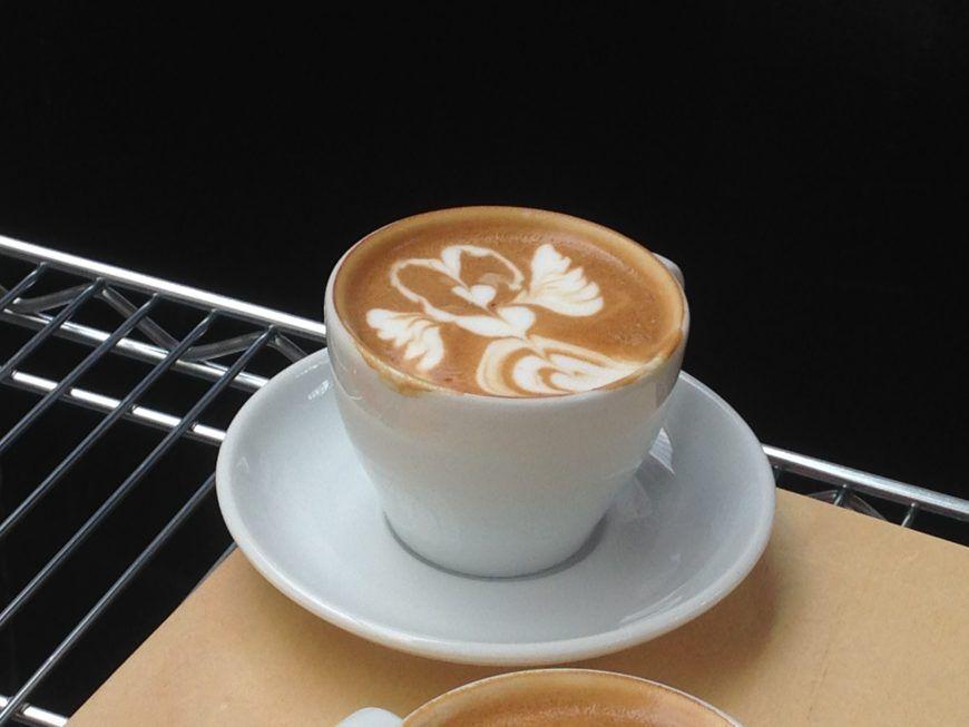 latte-main-pic