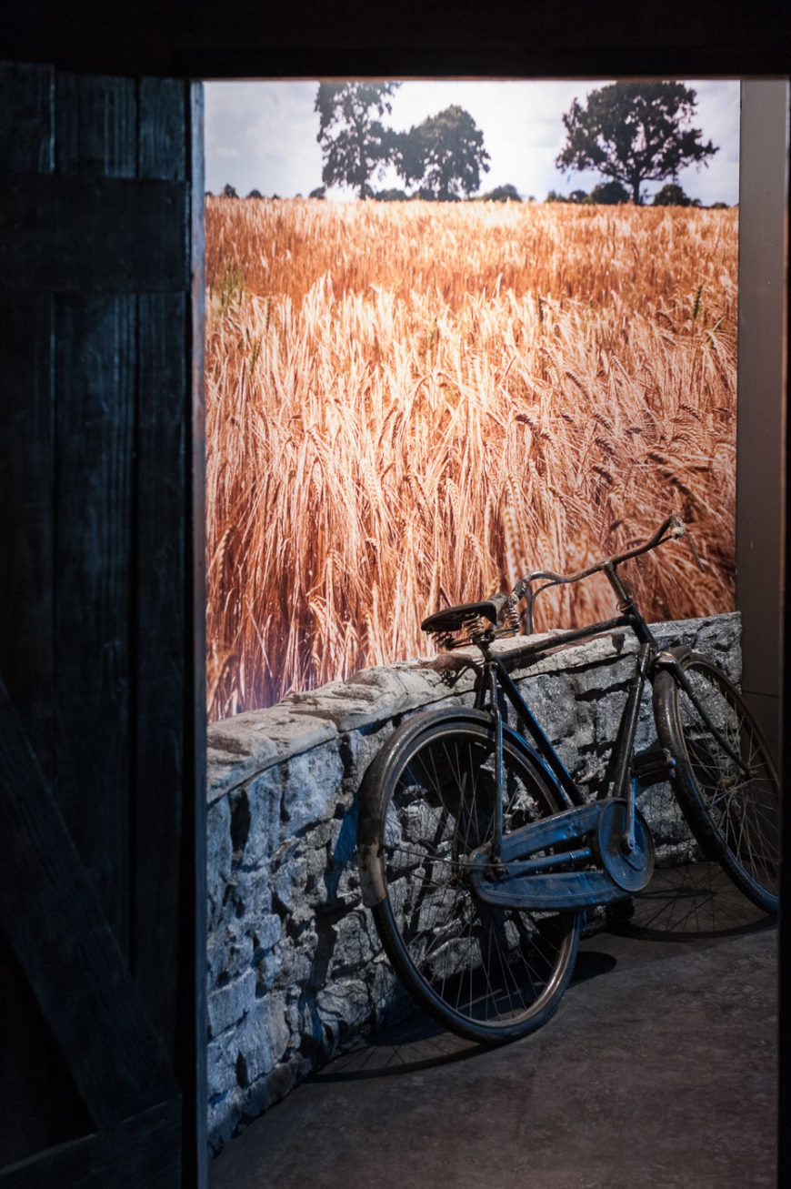Bicycle-Barley-Field