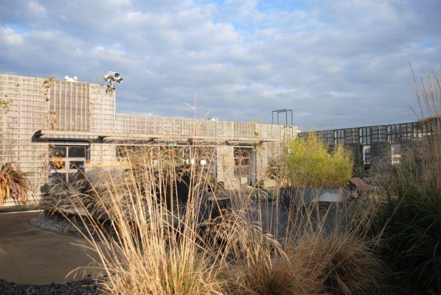 Chester-Beatty-Rooftop-Gardens