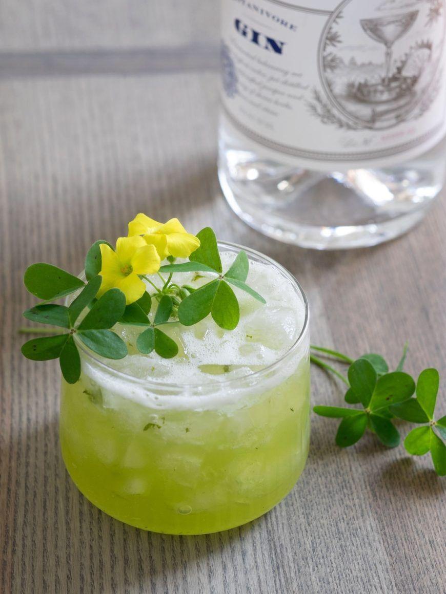 Gin9 Awoodsorrelsmash