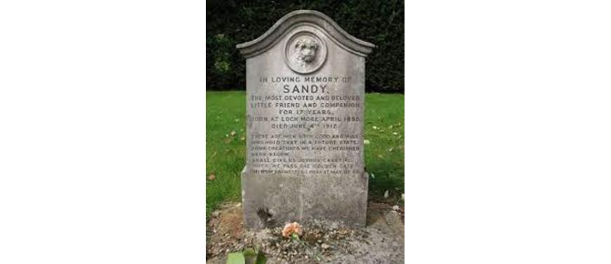 9 Pet Graveyard