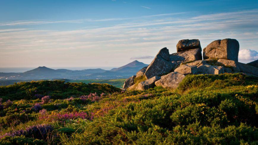 Three Rock Mountain Southern Tor