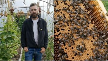 Lovin Dubliners: Olly's Farm Tell Us How He's Created A Buzzing Business