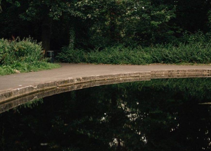 Bushy Park 11