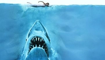 A Rooftop Screening Of 'Jaws' Is Taking Place This Weekend