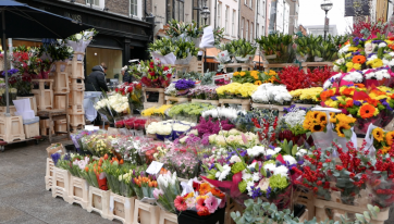 Firm withdraws complaint about Grafton Street traders and apologises to flower sellers