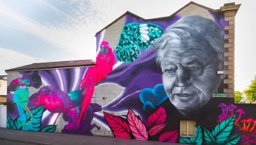 A New David Attenborough Mural Has Just Appeared In Dublin