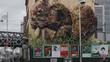 Dublin's Red Squirrel Mural Is Being Replaced By A Hotel