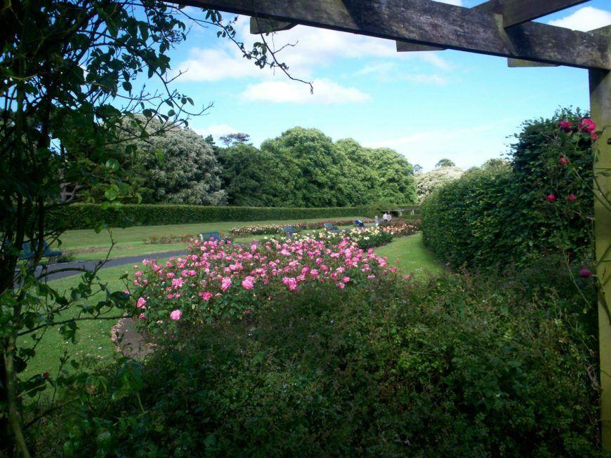 Rose Garden2 St Annes Park Dublin