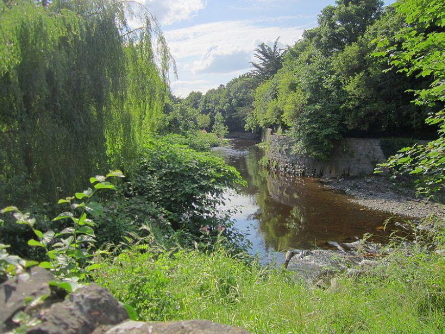 Image-6-Dodder Milltown