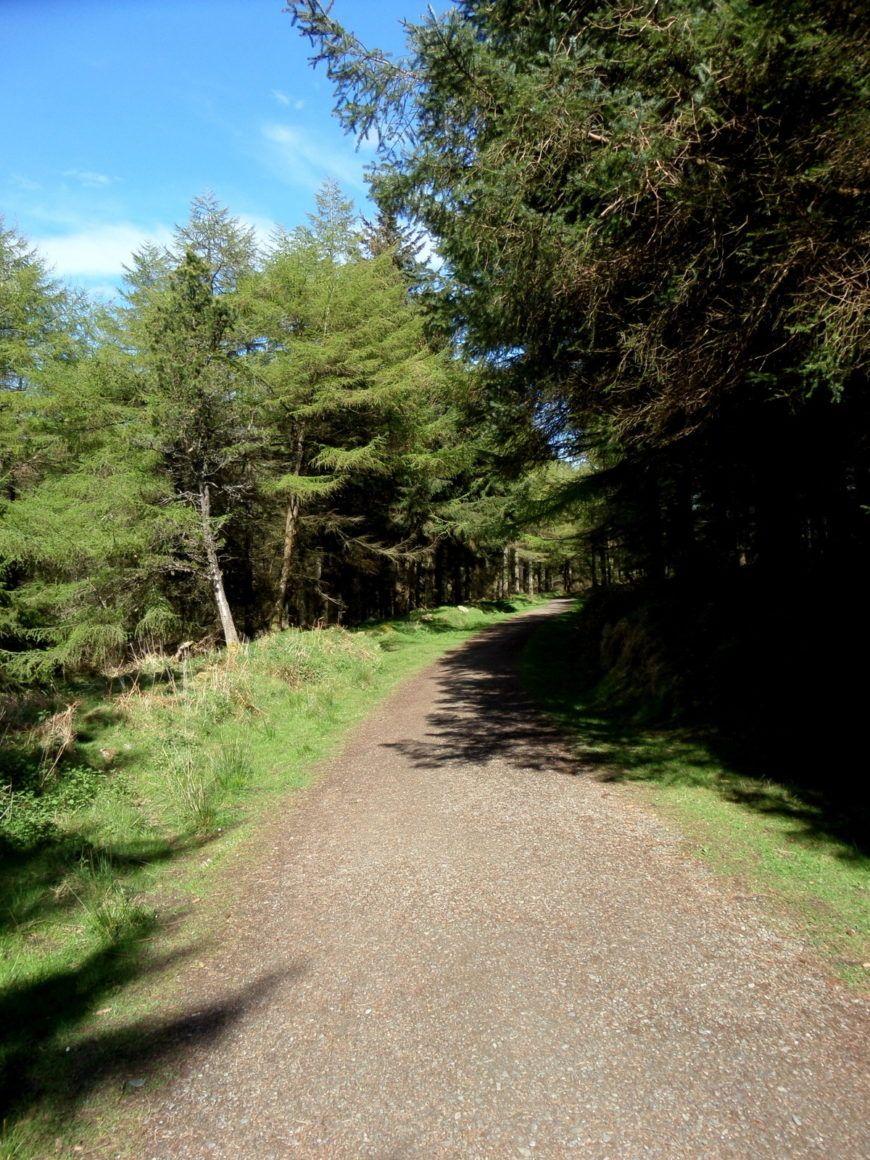 Pic-5-Path