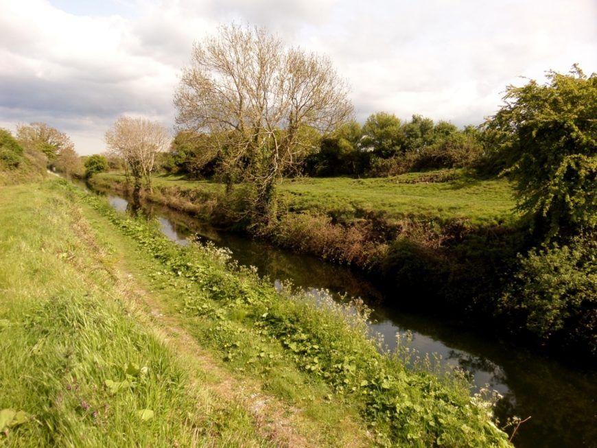 Pic-8-Lovin-Kildare
