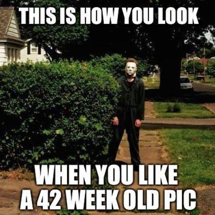 42-week-old-pic