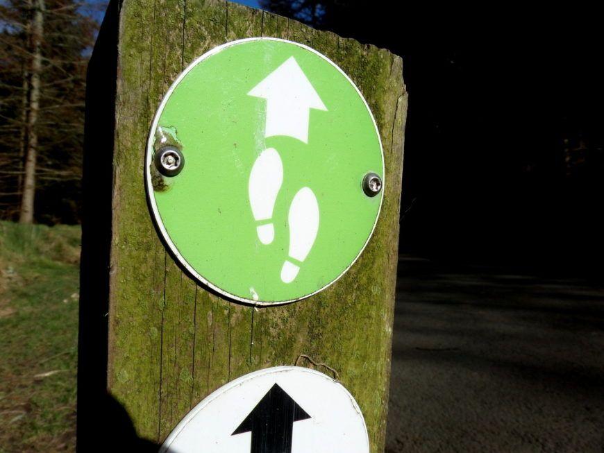 Green-Trail