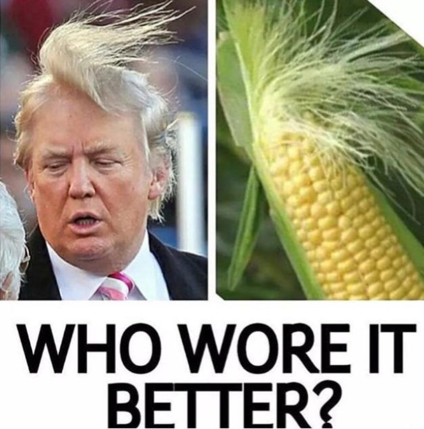 Trump Vs Corn Who Wore It Better Meme