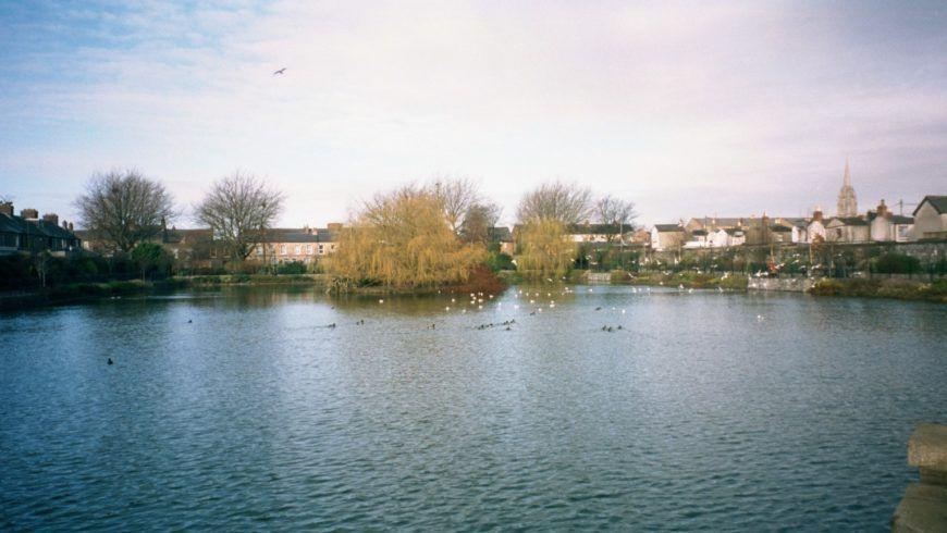 Blessington Street Basin Impression A