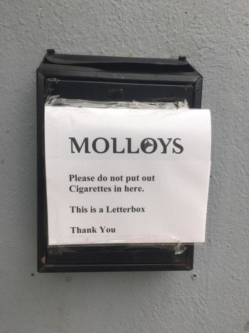 Molloys Oic