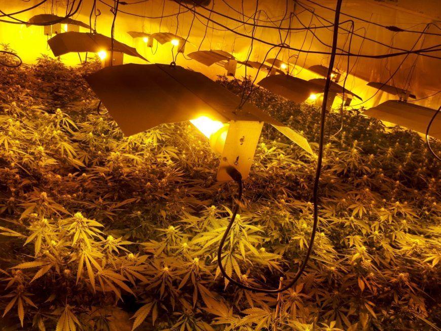 Belcamp Drug Seizure