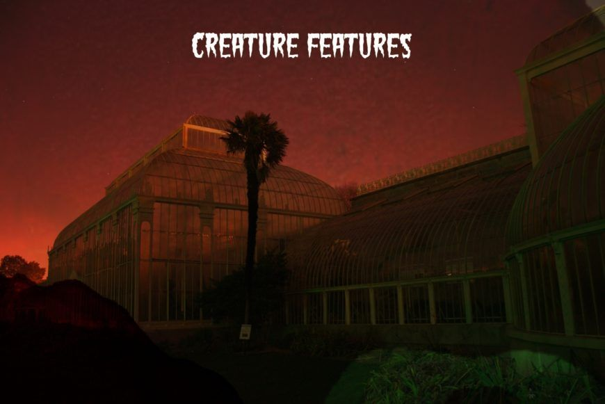 Bsf Creature Features