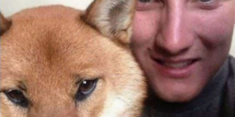 Family buys missing dog but no...