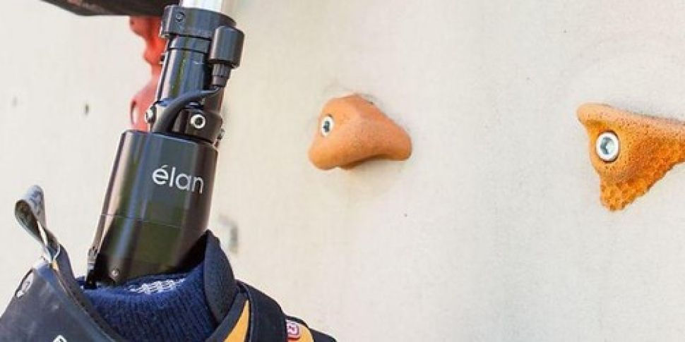 Researchers develop prosthetic...