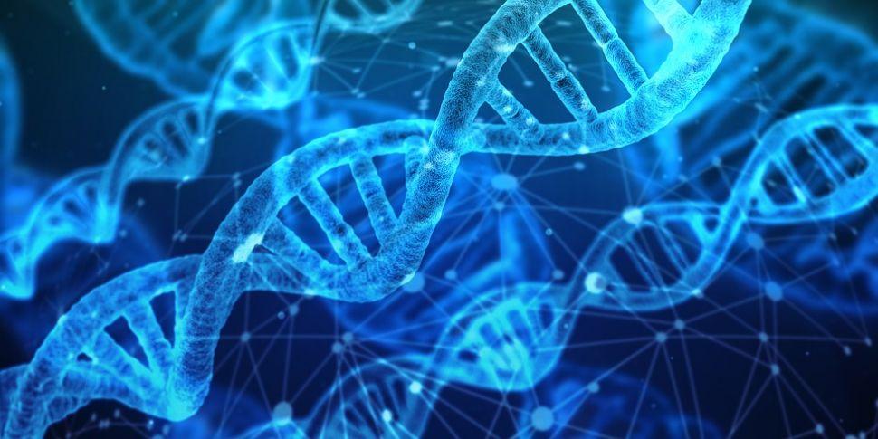 Futureproof Extra: Molecular C...