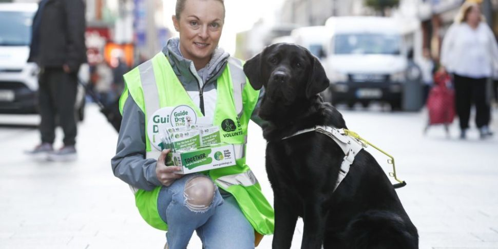 Irish Guide Dogs for the Blind...