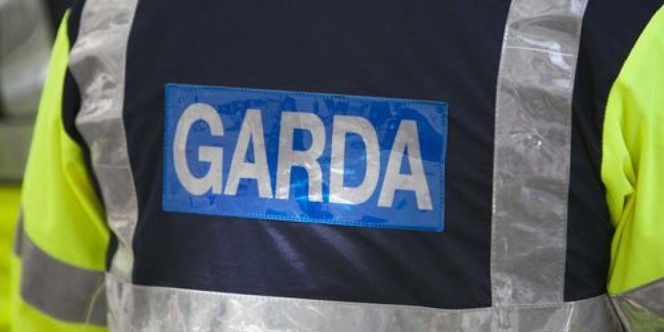 Garda member suspended from du...