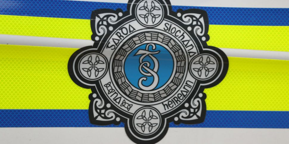 Gardaí appeal for witnesses to...