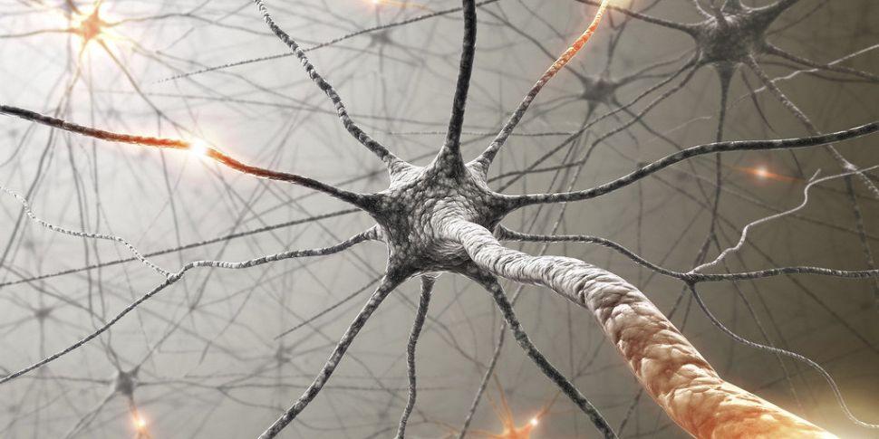 Futureproof Extra: Optogenetic...