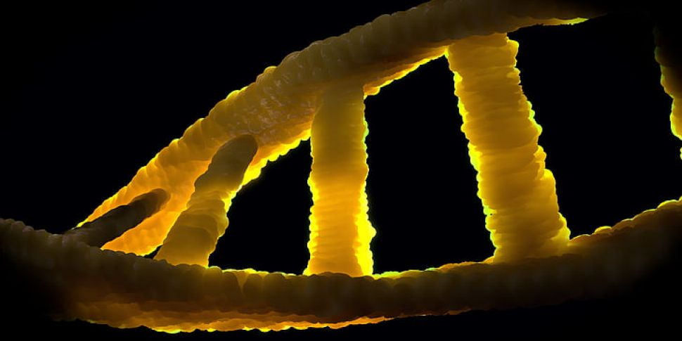 The Genetic Mistakes That Coul...