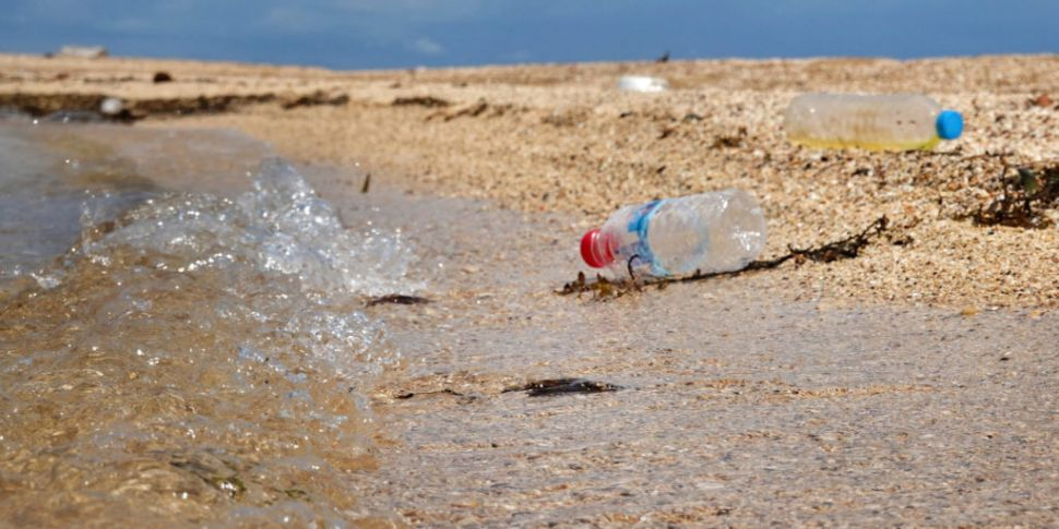 Woman who lived plastic-free f...