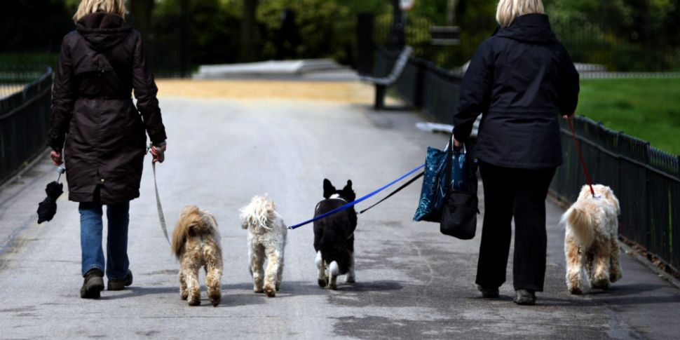 Should dog owners have to walk...