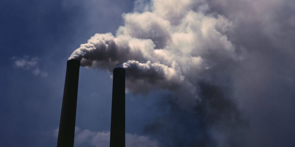 Green MEP says carbon tax is n...