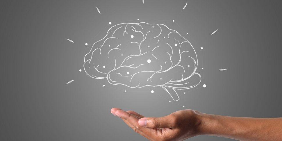 Brain HQ - Helping People Livi...
