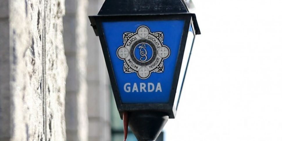 Gardaí renew appeal over fatal...