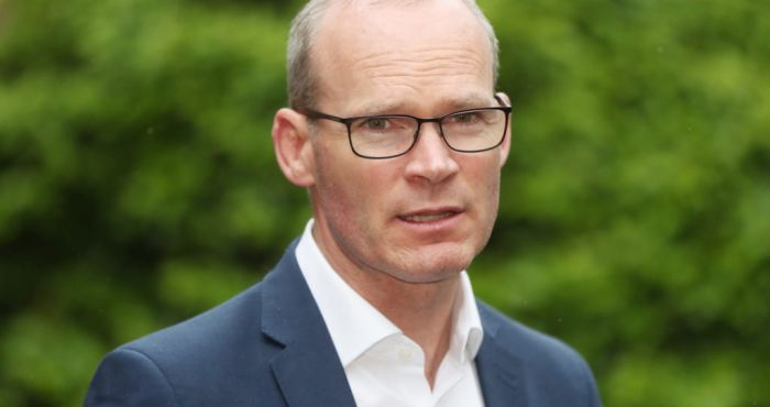 Coveney meets Russian Foreign Minister Lavrov in Moscow
