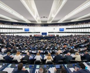 Irish MEPs may have to sit out...