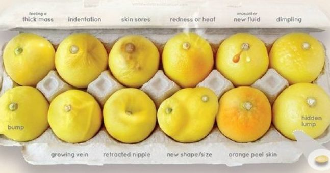 Lemon-inspired guide to breast cancer is a zest approach to