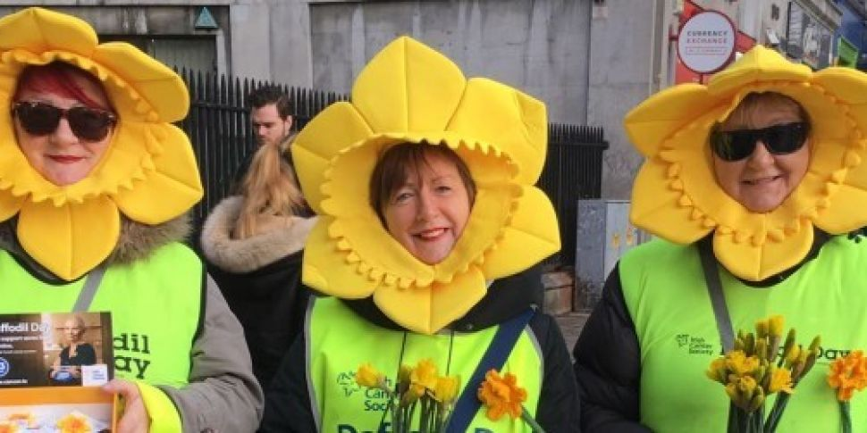Appeal to raise money for Daff...