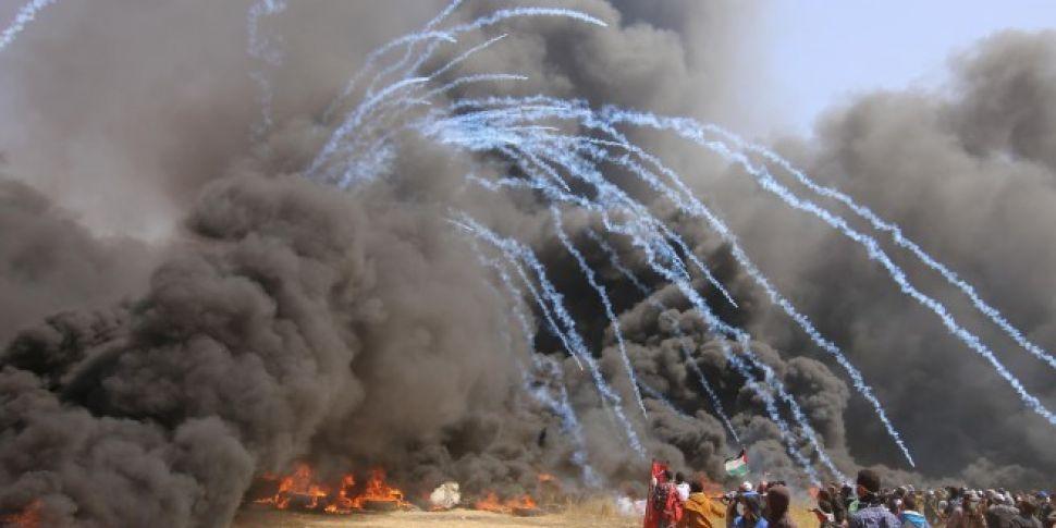Seven Palestinians killed by I...
