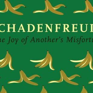 Chapter 252: 'Schadenfreud...