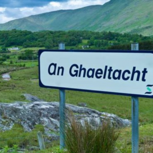The Irish Language