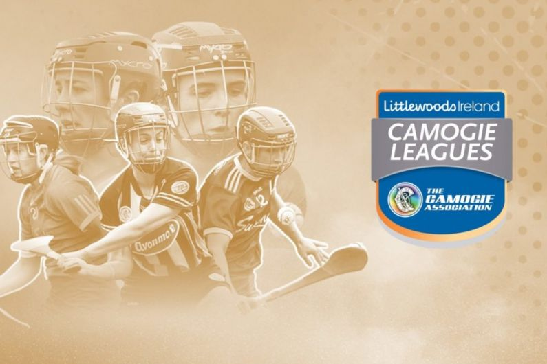 Cavan & Roscommon camogs in promotion hunt