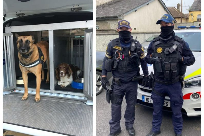 Gardaí carry out searches to tackle organised crime in east Cavan