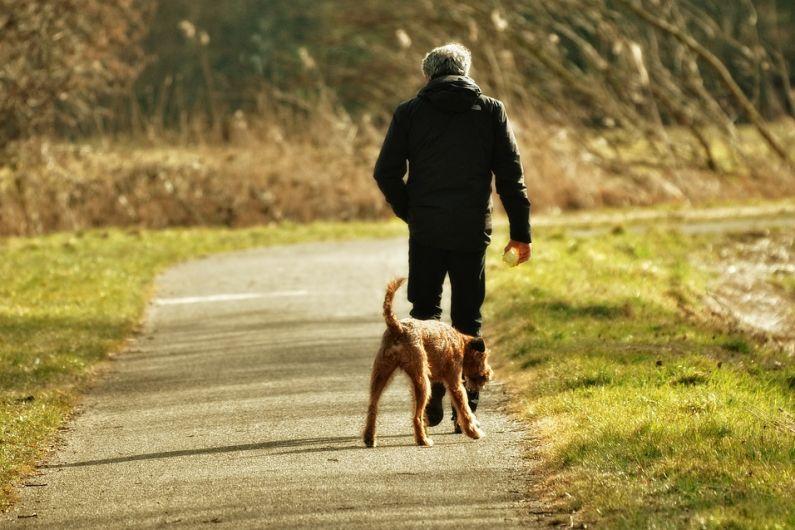 Castleblayney introduce dog fouling stencils on footpaths