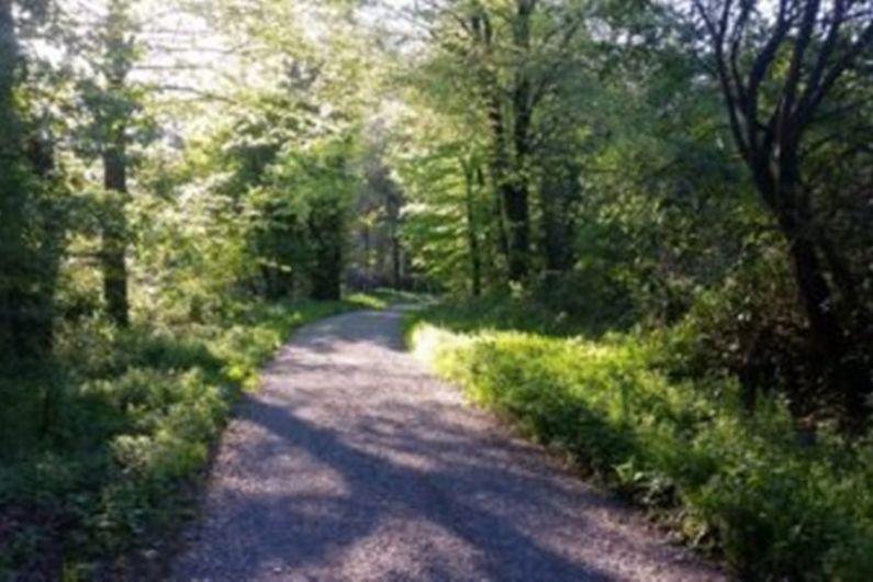 Coillte criticised for lack of involvement in Rossmore Park upgrades